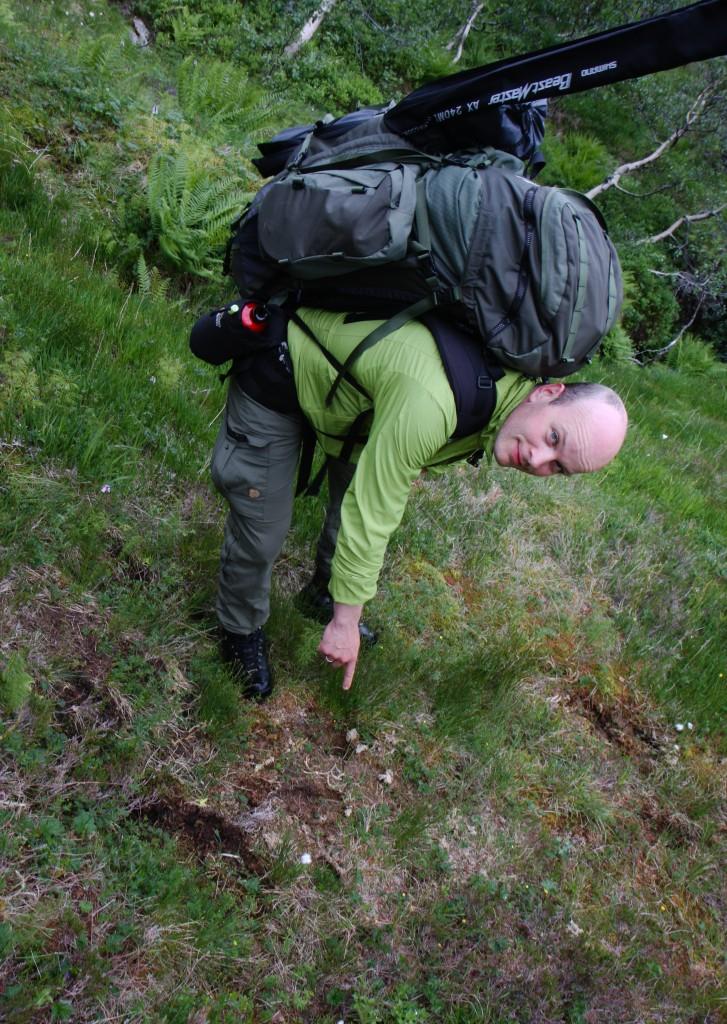 Eit noko utydeleg lemavtrykk i myra mellom Indrehus og Klenevatnet.